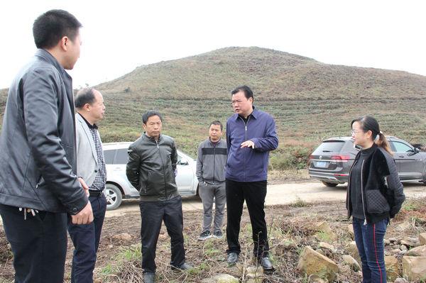 刘建新书记到木元村了解花椒种植情况(刘柱 摄)_副本.jpg